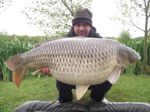 Carp start feeding at Bury Hill Fisheries as temperatures rise!
