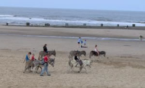 The Lincolnshire Fun Coast