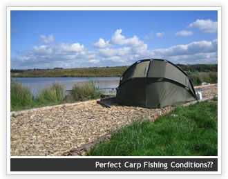 Carp Fishing Conditions