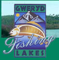 Gweryd Lakes Fishery Review