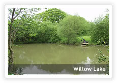 Willow Lake