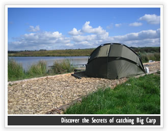 Discover the Secrets of catching Big Carp