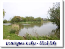 Cottington lakes - Black Lake