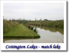 Cottington lakes - match lake