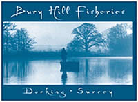 Bury Hill Fisheries fishery report