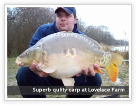 Lovelace farm fishery