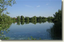 Coarse fishing venues in Bedfordshire - Manor Farm