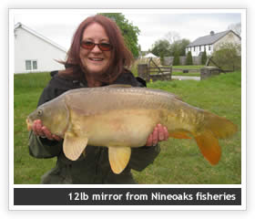 12lb mirror from Nineoaks Fisheries